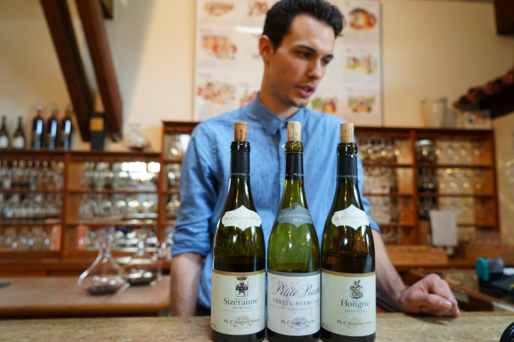 法國南部有很多葡萄酒莊供遊客參觀或即場品嚐